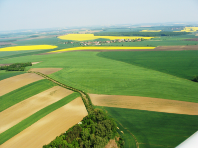 Lokální biokoridor LB 1 vkatastrálním území Dubečno na okrese Nymburk.png