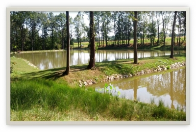 Vodní nádrž Třanovice - po realizaci'
